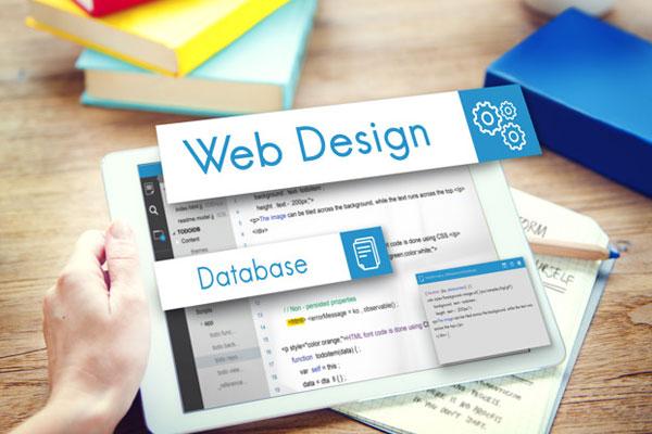thiết-kế-website-chuyên-nghiệp-giá-rẻ-tại-hải-phòng
