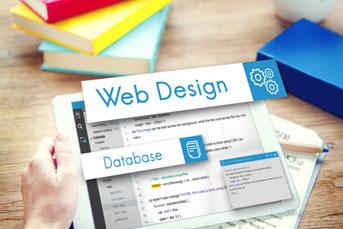 thiết-kế-website-giá-rẻ-tại-Hải-Phòng